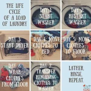 laundry life cycle