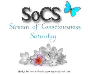 SoCS badge