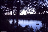 dusk fisherman