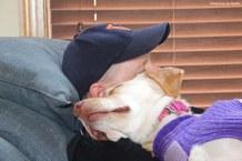 Phoebe snuggles.