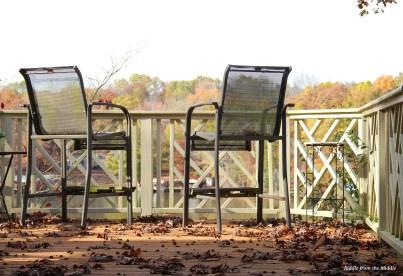 chair&leaves