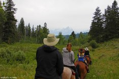 horseback in Tetons