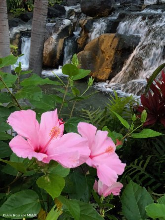flower at waterfall