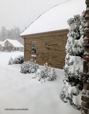 snow2018
