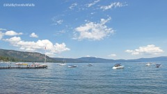 boats on Lake Tahoe